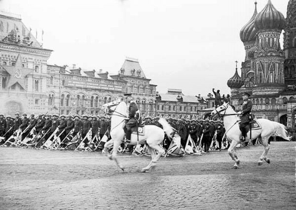 zhukov white horse