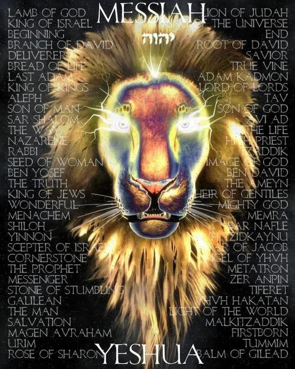 lion-of-judah-messiah.jpg